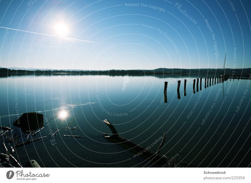 Sky Nature Water Blue Sun Relaxation Environment Landscape Coast Lake Tree trunk Lakeside Beautiful weather Float in the water Cloudless sky Wooden stake