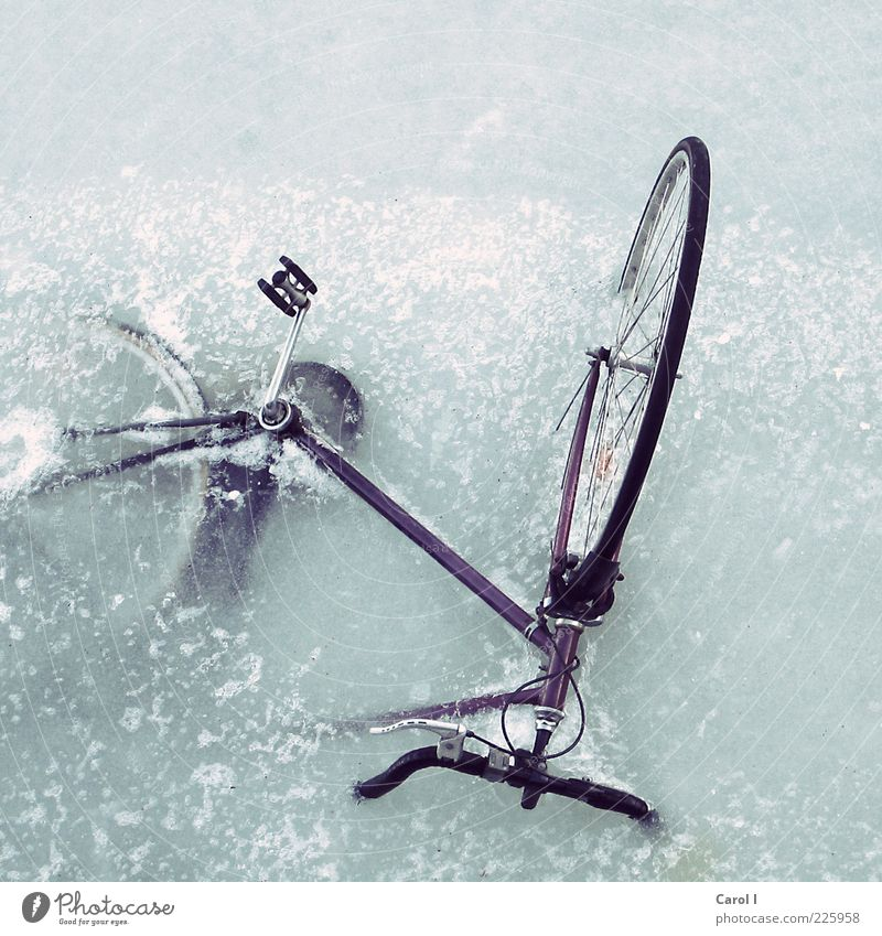 Then I'll walk. Lifestyle Style Winter Snow Dive Bicycle Water Climate Climate change Weather Ice Frost Lakeside Ocean Copenhagen Port City Means of transport