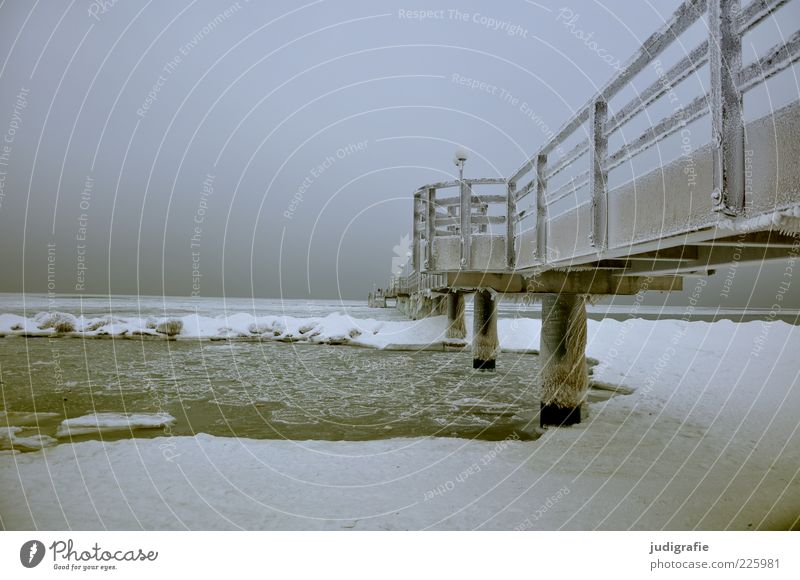Baltic Environment Nature Landscape Winter Climate Ice Frost Snow Coast Beach Baltic Sea Ocean Wustrow Darss Bridge Cold Natural Moody Tourism Sea bridge