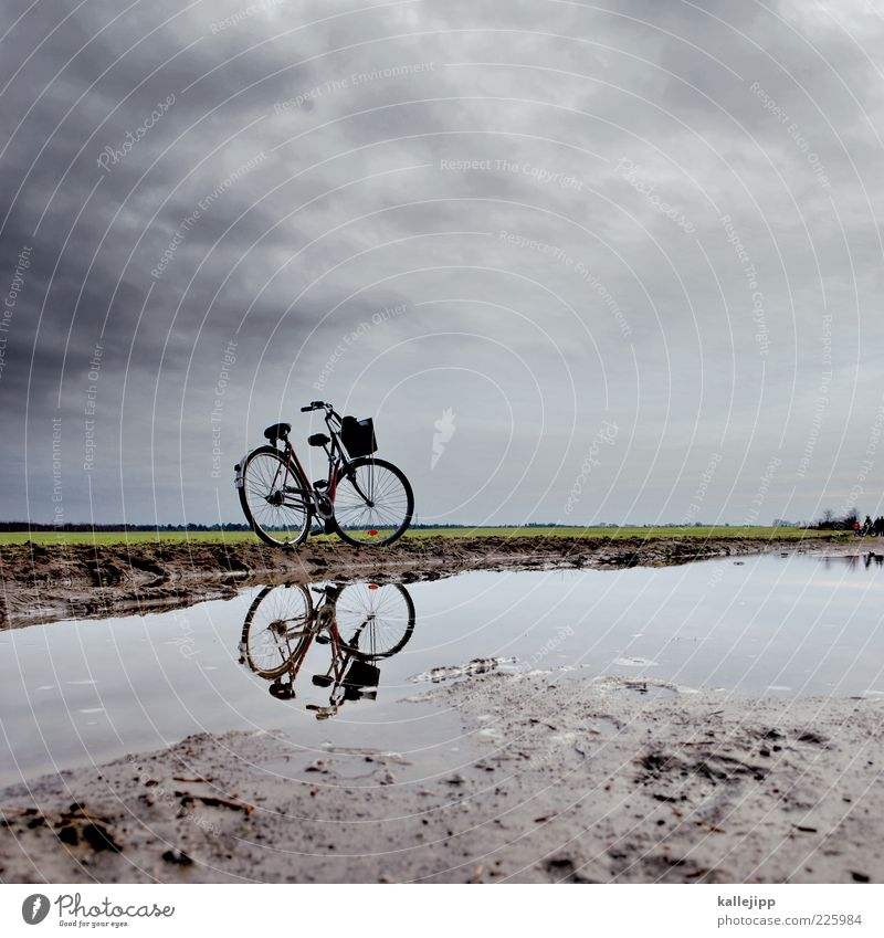Sky Nature Water Plant Winter Far-off places Environment Landscape Meadow Freedom Sand Rain Earth Weather Bicycle Field