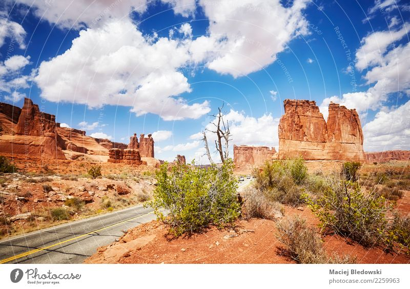 Scenic view of the Arches National Park Sky Nature Vacation & Travel Summer Beautiful Landscape Travel photography Environment Lanes & trails Tourism Freedom