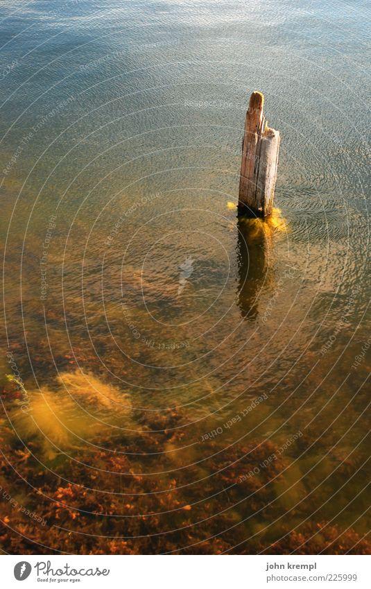 Water Blue Calm Loneliness Environment Stone Coast Brown Waves Wet Ground Hope Romance Fluid Individual Joie de vivre (Vitality)
