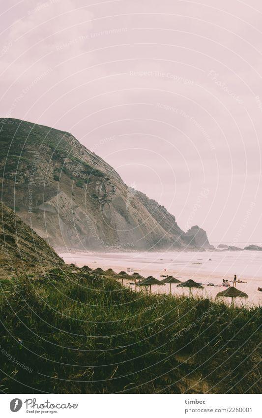 Cliffs at the surf beach in Portugal Landscape Sand Water Sky Clouds Summer Autumn Wind Grass Mountain Coast Beach Ocean Exceptional Threat Sharp-edged Firm