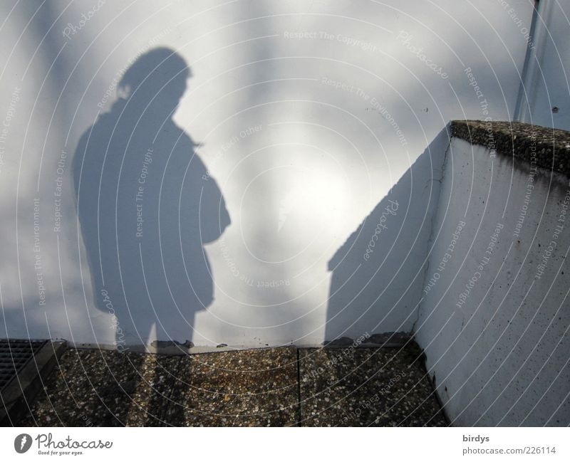 shadow man Masculine Young man Youth (Young adults) Man Adults 1 Human being Wait Wall (barrier) Silhouette Sunlight Wall (building) Contrast Light Colour photo