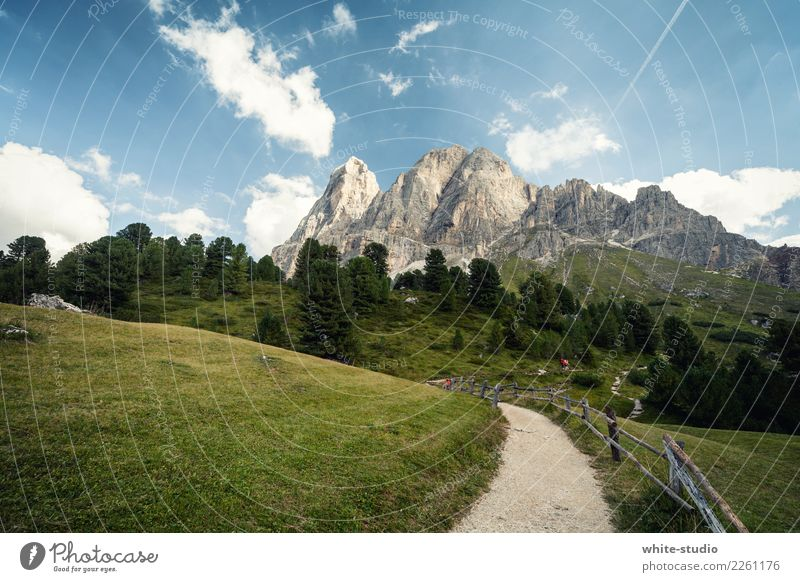Dolomites Mountain Hiking South Tyrol Sports Exterior shot Relaxation Recreation area Lanes & trails Footpath Peitlerkofel Colour photo