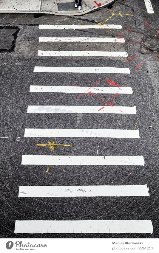 Pedestrian crossing in New York City from above. Town Street Road sign Cliche Black White Brave Safety Protection Obedient Concern Stress Relationship Resolve