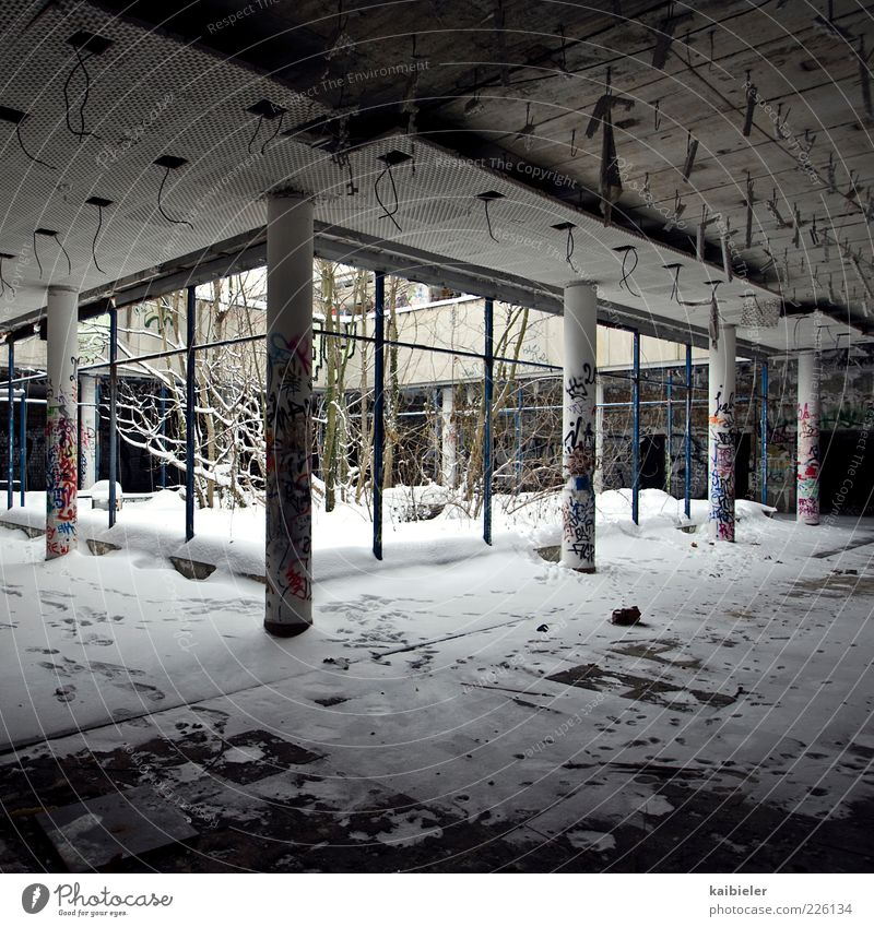 winter garden Winter Snow Tree Bushes Manmade structures Building Column Interior courtyard Well of light Window Ceiling Concrete Graffiti Prefab construction
