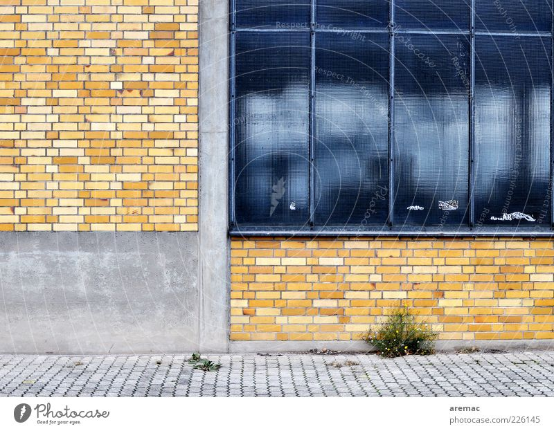 Old Blue Calm House (Residential Structure) Yellow Wall (building) Window Architecture Wall (barrier) Building Facade Concrete Clean Factory Transience Manmade structures