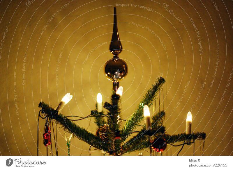 peak Winter Tree Illuminate Dark Glittering Kitsch Gold Glitter Ball Christmas tree Top of the Christmas tree Fairy lights Christmas & Advent