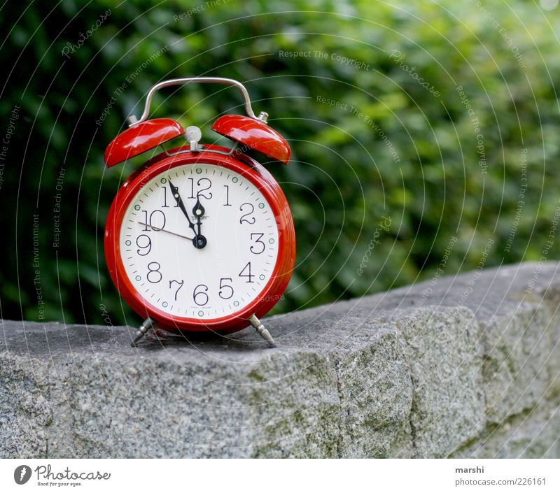Nature Green Red Stone Wall (barrier) Time Clock Retro Symbols and metaphors Clock face 12 Alarm clock Point in time Clock hand Timetable Stone wall
