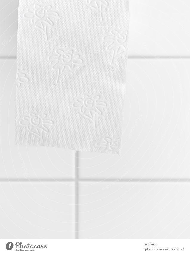 White Fresh Authentic Clean Soft Bathroom Simple Pure Toilet Personal hygiene Body care tools Cleanliness Toilet paper Flowery pattern