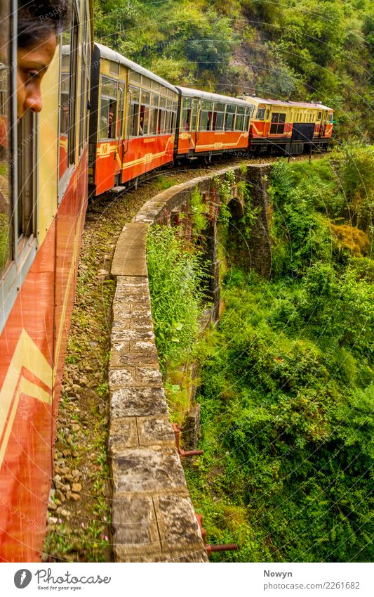 Train Ride in the Himalayas Contentment Vacation & Travel Tourism Trip Adventure Far-off places Freedom Sightseeing Environment Nature Landscape Plant Bushes