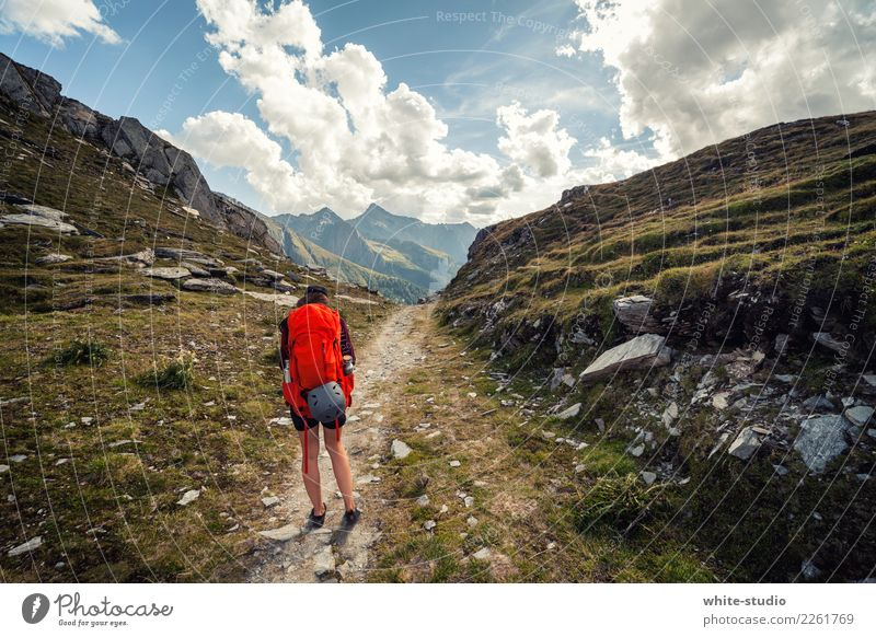 Nature Youth (Young adults) Young woman Landscape Loneliness Mountain 18 - 30 years Adults Environment Lanes & trails Rock Hiking Adventure Peak Alps Backpack
