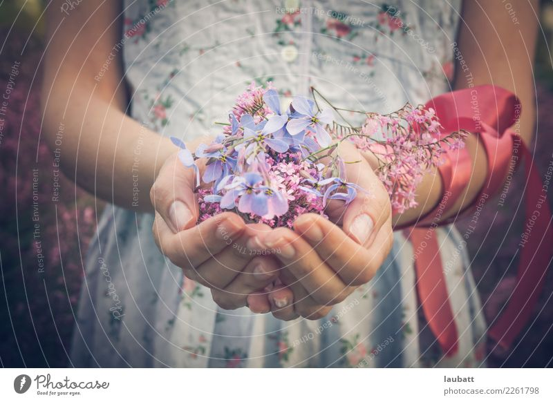 Flowers for you Manicure Woman Adults Hand Lilac Bouquet String Knot Blossoming Feasts & Celebrations Friendliness Feminine Acceptance Agreed Loyal