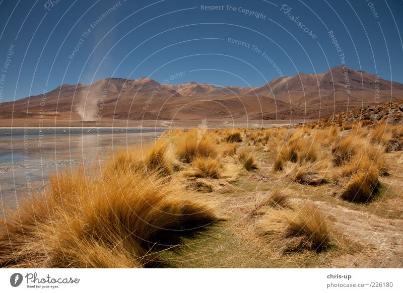 Lagoon and compass rose Far-off places Freedom Safari Expedition Mountain Environment Nature Landscape Weather Wind Gale Andes Lake Desert South America