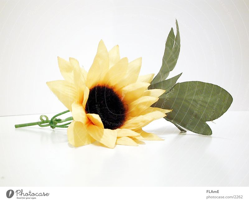 Nature Beautiful Green Plant Yellow Style Blossom Retro Lie Decoration Plastic Dry Sunflower Textiles Blossom leave Artificial