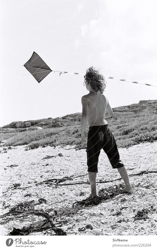 139 [Childhood Dreams II] Playing Children's game Hang gliding Vacation & Travel Freedom Summer Summer vacation Beach Boy (child) Infancy 3 - 8 years Wind