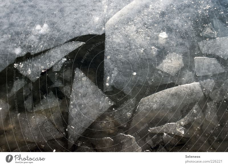 ice age Winter Environment Nature Water Climate Ice Frost Fluid Cold Broken Wet Natural Ice floe Ice sheet Colour photo Exterior shot Detail Deserted Day Light