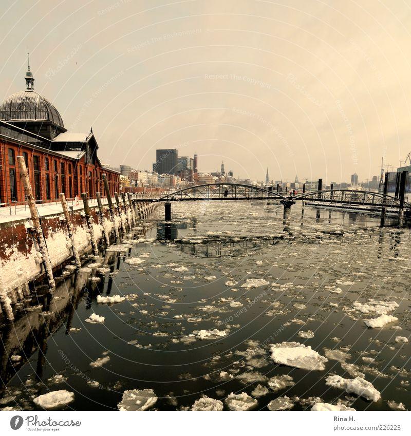 Hamburg harbour in winter Winter River Harbour Bridge Building Tourist Attraction Navigation Inland navigation Freeze Cold Altonaer Fischauktionshalle Ice floe