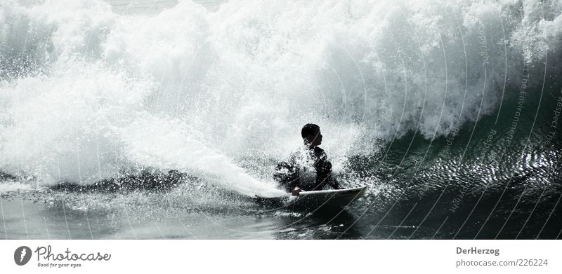 Water Ocean Sports Waves Lifestyle Surfing Surfer White crest Surfboard Extreme sports Freak wave Crest of the wave