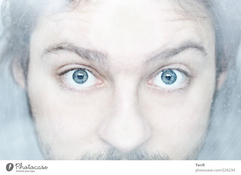 cold as eyes Masculine Young man Youth (Young adults) Man Adults Face 1 Human being 18 - 30 years Observe Discover Looking Cool (slang) Blue Eyes Facial hair