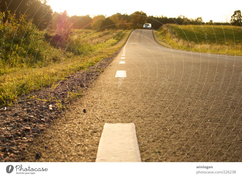 A country road in southern Sweden Nature Landscape Plant Earth Sun Sunlight Autumn Beautiful weather Tree Grass Transport Traffic infrastructure Logistics