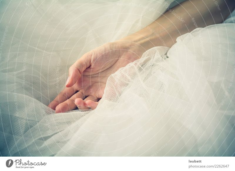 Softness - Ballerina Woman Beautiful Hand Relaxation Calm Adults Life Healthy Health care Style Contentment Body Elegant Skin Fingers Hope