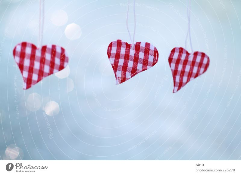 Blue Red Love Happy Heart Romance Kitsch Sign Symbols and metaphors Hang Checkered Point of light Odds and ends Dangle Heart-shaped Suspended