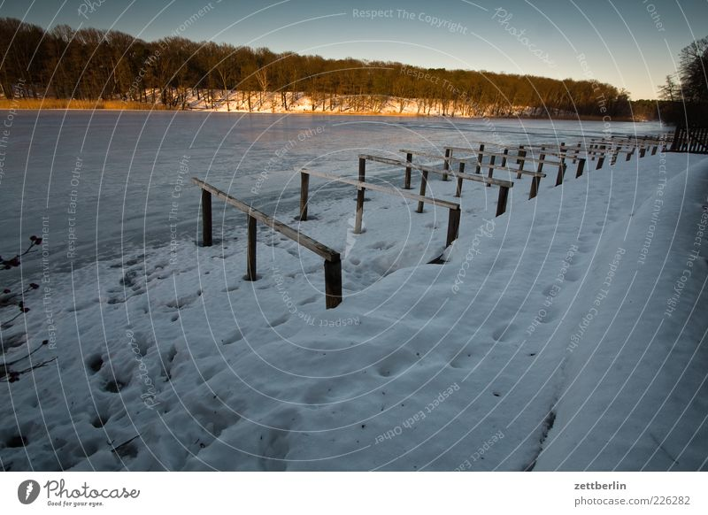 Sky Calm Winter Cold Snow Berlin Freedom Environment Landscape Lake Weather Ice Leisure and hobbies Frost Footprint Footpath