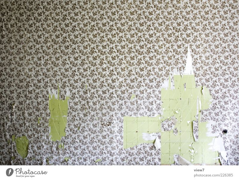 Wallpaper over it! Decoration Room Ornament Old Esthetic Authentic Kitsch Modern Design Uniqueness Decline Past Transience Living or residing Time Tile Broken