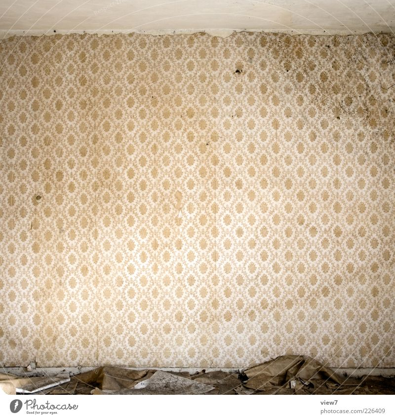 slightly wavy Wallpaper Room Wall (barrier) Wall (building) Ornament Old Dirty Dark Authentic Simple Broken Retro Cliche Trashy Loneliness Decline Past
