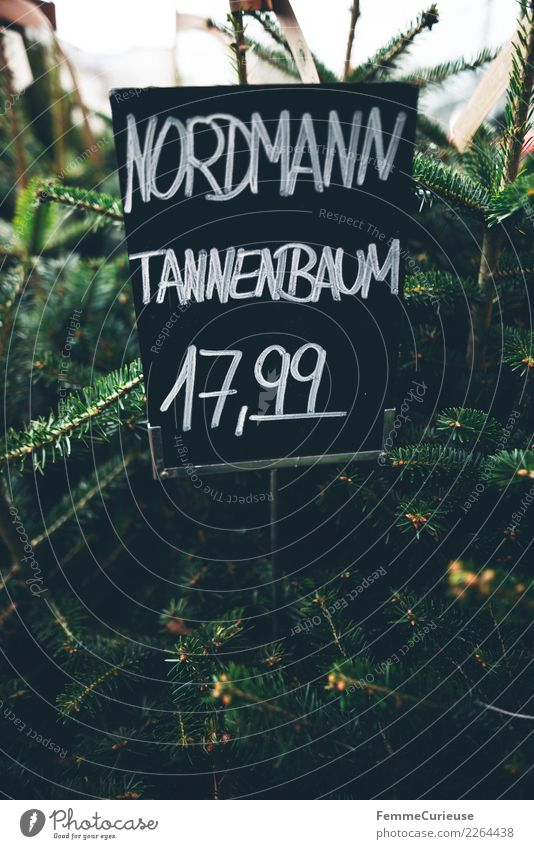 Handwritten price tag for 'Nordmann Tannenbaum' (Christmas tree) Nature Shopping Price tag northman Fir tree Christmas & Advent Flower shop Chalk Blackboard