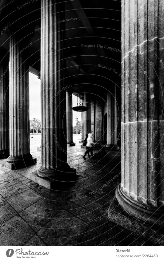 columns Berlin Capital city Downtown Manmade structures Building Architecture Tourist Attraction Brandenburg Gate Gray Black White Column Paving stone