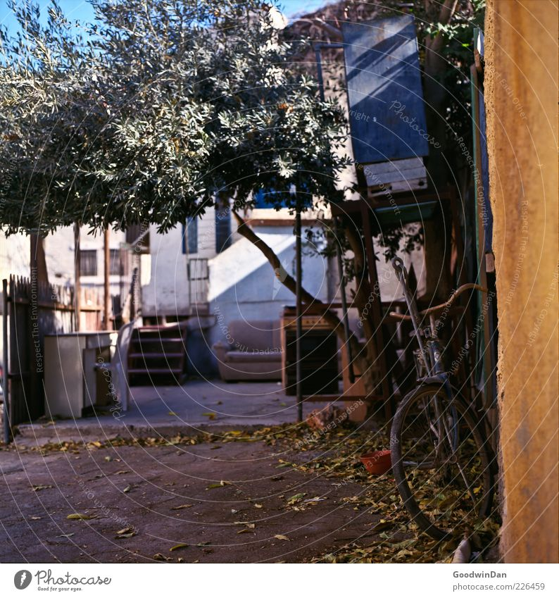 Old Leaf House (Residential Structure) Wall (building) Wall (barrier) Facade Dirty Stairs Poverty Authentic Many Chair Fence Terrace Flowerpot Old town