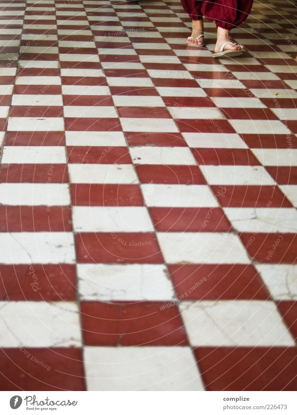 Chess in Bordeaux Style Living or residing Decoration Human being Legs Feet 1 Flip-flops Going Red White Pattern Colour photo Exterior shot Copy Space bottom