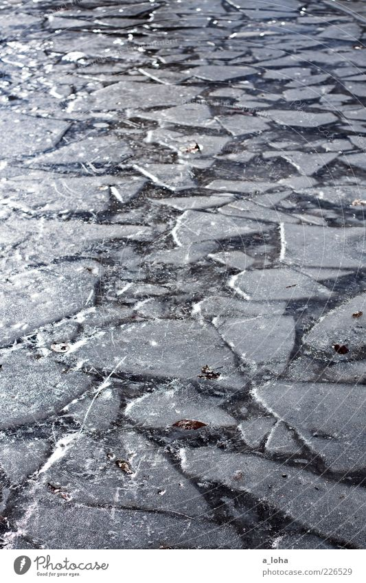 Nature Water Sun Winter Cold Line Contentment Ice Glittering Frost Uniqueness Elements Under Touch Firm Freeze