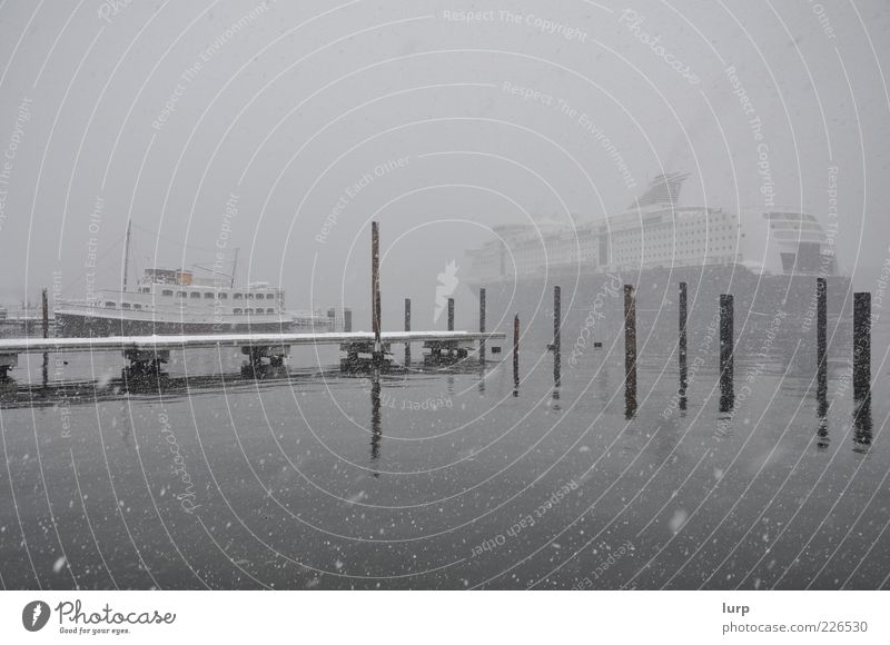 # Rain on a cold day # Ocean Winter Snow Water Snowfall Harbour Cruise liner Ferry Watercraft Gray Snowflake Kiel Subdued colour Fog Haze Mooring post