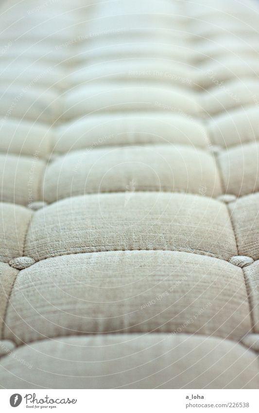 Old Style Line Contentment Flat (apartment) Design Arrangement Lifestyle Stripe Retro Soft Sofa Furniture Nostalgia Symmetry
