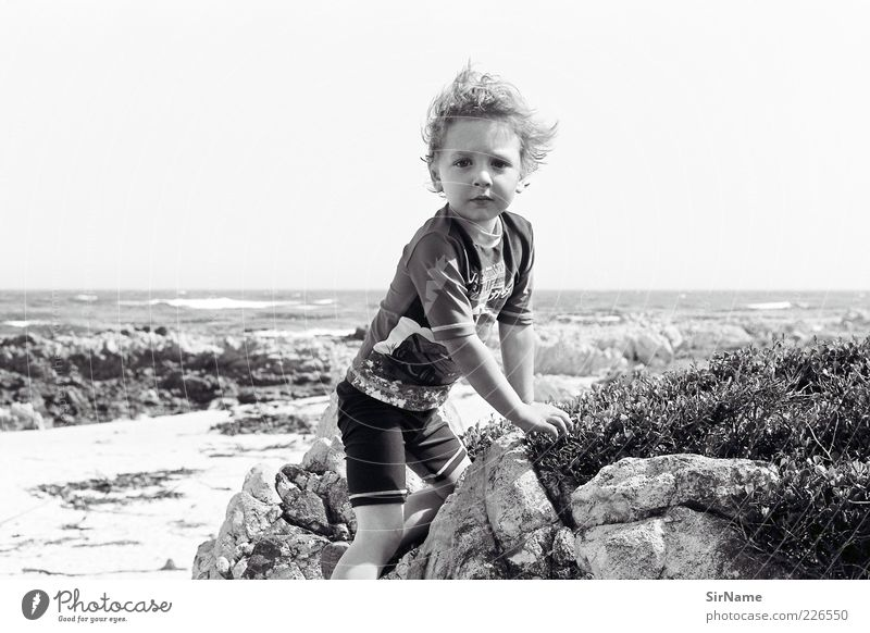 Human being Child Beautiful Summer Plant Ocean Beach Life Playing Movement Boy (child) Freedom Coast Natural Rock Infancy
