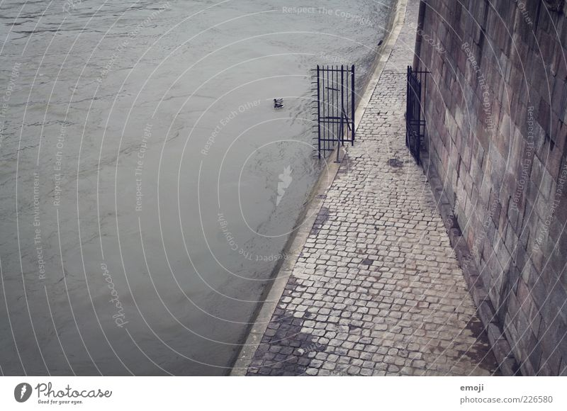 Seine Autumn Winter River bank Dark Cold Gloomy Gray Sidewalk Wall (building) Wall (barrier) Gate Water Paving stone Narrow Sadness Colour photo Subdued colour