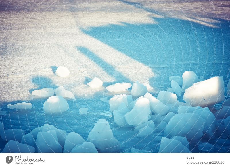 Blue White Winter Environment Cold Snow Ice Climate Frost Harbour Frozen Fragment Ice floe Snow layer Ice cube Block of ice