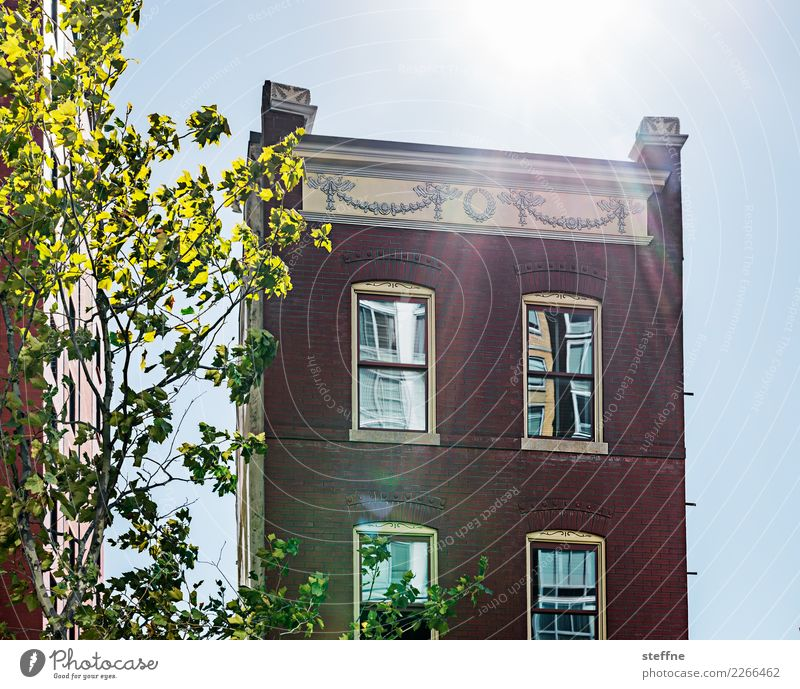 Around the World: Washington Cloudless sky Sunlight Beautiful weather Tree House (Residential Structure) Detached house Wall (barrier) Wall (building) Facade