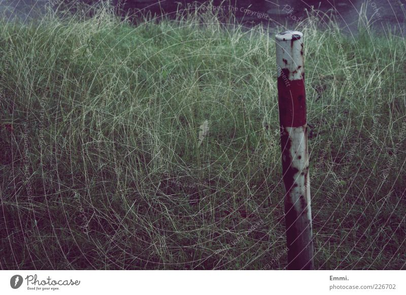 always Plant Grass Old Broken Gloomy Green Red White Unwavering Badlands Colour photo Exterior shot Deserted Day Long shot Rust Red-white-red Pole Boundary