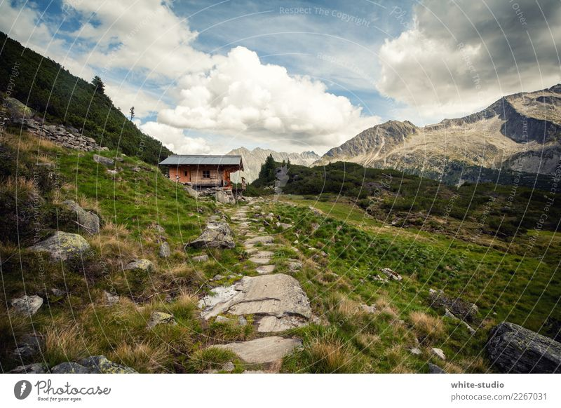 mountain hut Healthy Leisure and hobbies Summer Summer vacation Sun Mountain Hiking Hill Alps Alpine hut Panorama (View) Hut Chalet vacation mountain holiday