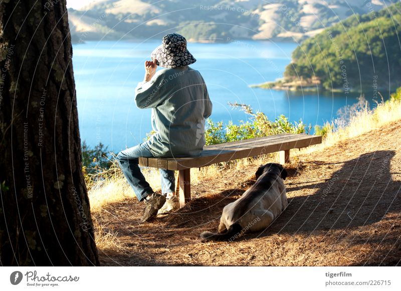 overlooking a lake senior Lady Woman Old Dog Rest Reservoir California Beautiful weather Sunlight Afternoon Stick Walking stick Bench Lake Blue Hill Looking Hat