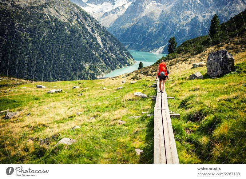 A path to adventure! Mountain Hiking To go for a walk Footpath Lanes & trails Events Dolomites South Tyrol Colour photo
