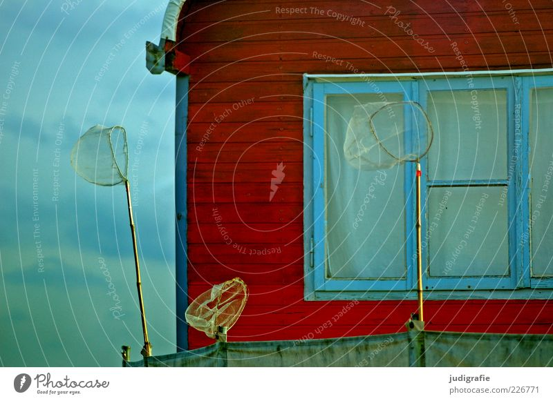 vacation Freedom Camping Summer Window Caravan Trailer Exceptional Friendliness Happiness Uniqueness Red Moody Relaxation Net Colour photo Exterior shot