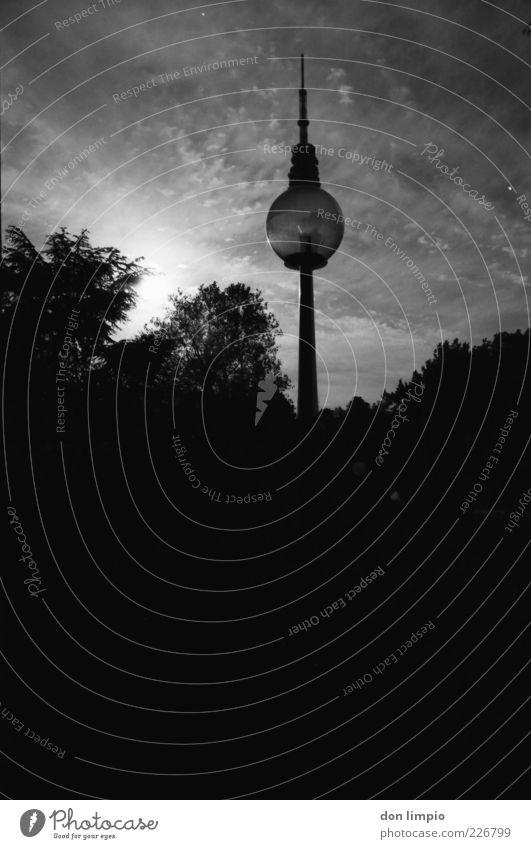 Sky Tree Summer Black Dark Park Tall Large Hamburg Tower Bushes Lantern Analog Beautiful weather Landmark Downtown