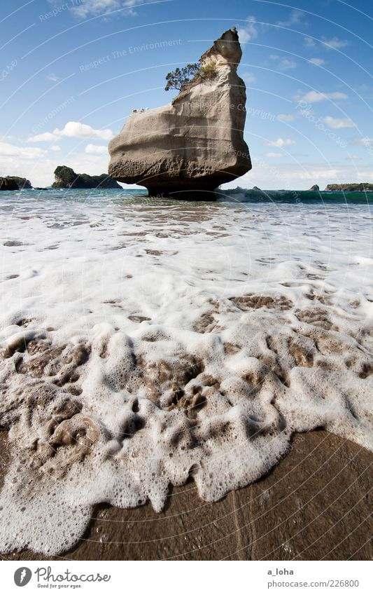 cathedral cove Nature Elements Sand Water Sky Clouds Beautiful weather Rock Waves Coast Beach Ocean Movement Famousness Cold Wet Wanderlust Loneliness Pure
