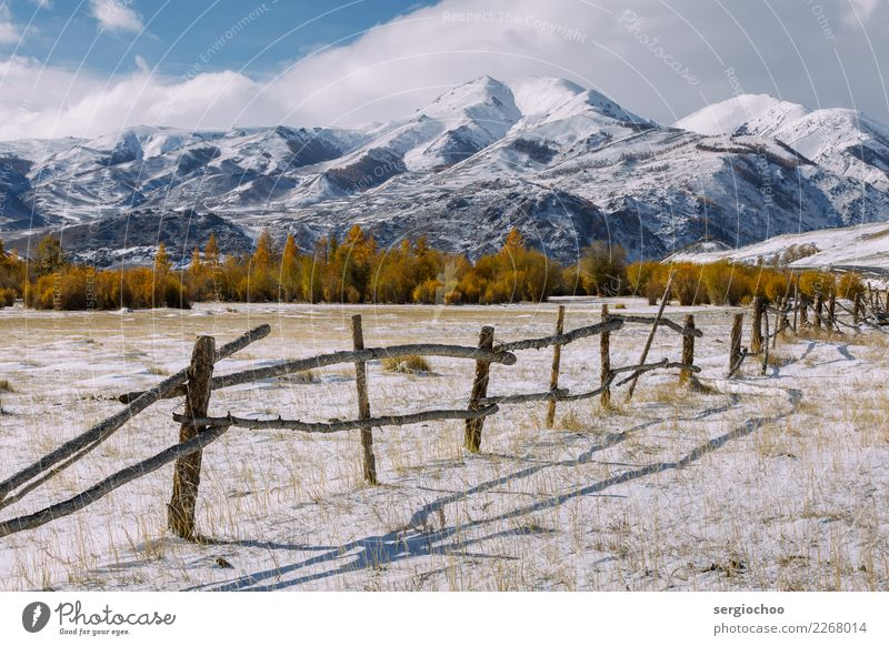 old fence Vacation & Travel Tourism Trip Adventure Freedom Expedition Winter vacation Mountain Hiking Nature Clouds Autumn Climate change Ice Frost Snow Tree